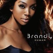 Human von Brandy