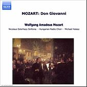 Don Giovanni by Wolfgang Amadeus Mozart