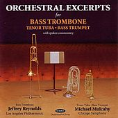 Orchestral Excerpts for Bass Trombone, Tenor Tuba, Bass Trumpet by Various Artists