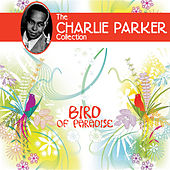 Bird of Paradise by Charlie Parker