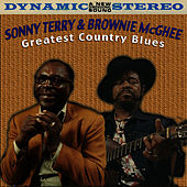 Greatest Country Blues by Sonny Terry