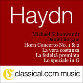 Franz Joseph Haydn, Horn Concerto No. 1 In D, Hob. Viid:7 by Various Artists