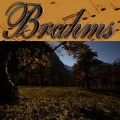 Musica Clasica - Johannes Brahms by Johannes Brahms