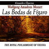 Opera - Las Bodas De Figaro by Wolfgang Amadeus Mozart