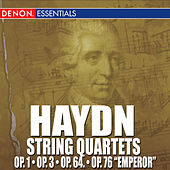 Haydn: String Quartets by Various Artists