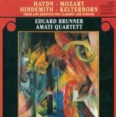 HAYDN, F.J.: Clarinet Trios Nos. 1-3 / KELTERBORN, R.: Fantasien, Inventionen und Gesange / HINDEMITH, P.: Clarinet Quintet, Op. 30 (Brunner) by Eduard Brunner