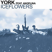 Iceflowers (The Mixes) by York