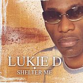 Shelter Me by Lukie D