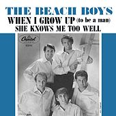When I Grow Up (To Be A Man) by The Beach Boys