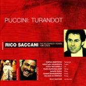 Puccini: Turandot by Rico Saccani