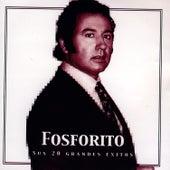 Fosforito, Sus 20 Grandes Éxitos by Fosforito