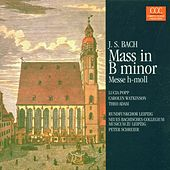 Johann Sebastian Bach: Mass in B minor (Messe h-moll) /Selections by Various Artists
