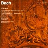 Johann Sebastian Bach: Weltliche Kantaten - Schweigt stille, plaudert nicht, BWV 211 & Mer hahn en neue Oberkeet, BWV 212 by Edith Mathis, Peter Schreier, Theo Adam, Kammerorchester Berlin