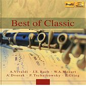Classical Dreams, Klassik Zur Entspannung 2 by Various Artists
