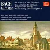 Bach: Kantaten BWV 80, BWV 137, BWV 26 by Various Artists