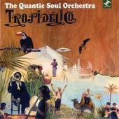 Tropidelico by Quantic