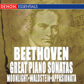 Beethoven: The Great Piano Sonatas by Various Artists