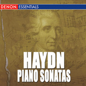 Haydn: Piano Sonatas by Various Artists