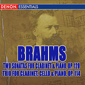 Brahms: Two Sonatas for Clarinet and Piano, Op. 120 and Trio for Clarinet, Cello, and Piano, Op. 114 by Elisabeth Ganter