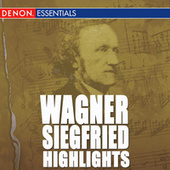 Wagner: Siegfried Highlights by Grosses Symphonieorchster