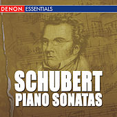 Schubert: Piano Sonatas by Various Artists