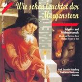 PRAETORIUS, M.: Choral Music (Advents and Christmas Music) (Isaak Ensemble Heidelberg, Frankfurter Renaissance Ensemble) by Isaak Ensemble Heidelberg