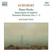 Impromptus / Moments Musicaux by Franz Schubert