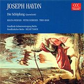 HAYDN, F.J.: Schopfung (Die) (The Creation) (Koch) by Peter Schreier