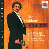 Trumpet and Corno da Caccia Concert - SPERGER, J.M. / HERTEL, J.W. / TELEMANN. G.P. / HAYDN, F.J. / MOZART, L. / TORELLI, G. (Guttler) by Various Artists