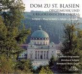 Organ Music and Gregorian Chants - GRIGNY, N. de / TOURNEMIRE, C. / ALAIN, J. / LANGLAIS, J. (St. Blaise's Cathedral) (Schmid) by Various Artists
