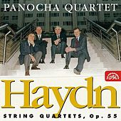 Haydn: String Quartets, op. 55 by Panocha Quartet