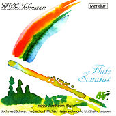 Telemann: Sonatas for Flute and Continuo by Yossi Arnheim