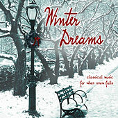 Winter Dreams: Classical Music For When Snow Falls by Various Artists