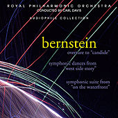 Bernstein: Overture to Candide by Royal Philharmonic Orchestra