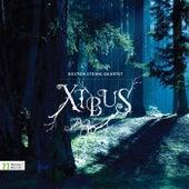 Navarette, N.: Polaris / Jenkins, K.: Palladio / Yazigi, M.: Roads / Anneken, U.: The Woods / Courduvelis, J.: Like It Is by Various Artists