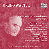 Walter Conducts Beethoven by Various Artists