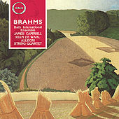 Brahms: Clarinet & Piano Quintets by Various Artists