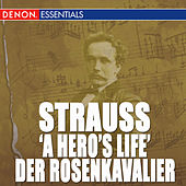 Richard Strauss: Symphonic Works by Various Artists
