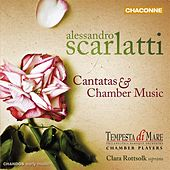 Scarlatti: Cantatas and Chamber Music by Various Artists