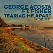 Tearing Me Apart by George Acosta