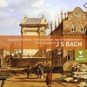 Bach - Violin Concertos by Various Artists