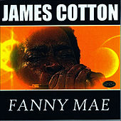 Fanny Mae by James Cotton