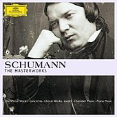 Schumann - The Masterworks by Various Artists