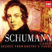 Schumann - 200th Anniversary Box - Lieder by Various Artists