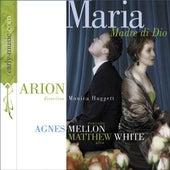 Maria - Madre di Dio von Various Artists