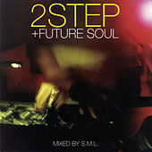2Step + Future Soul (Continuous DJ Mix By DJ S.M.L.) by Various Artists