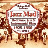 Jazz Mad, Vol. 1: Hot Dance, Jazz & Instrumental Blues 1925-1930 by Various Artists
