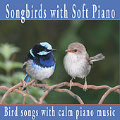 Songbirds With Soft Piano: Nature Sounds, Bird Sounds with Relaxing Piano by Robbins Island Music Group