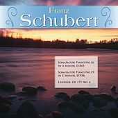 Franz Schubert: Sonata for Piano No.16 in A Minor, D.845; Sonata for Piano No.19 in C Minor, D.958; Ländler, Op. 171 No. 4 by Various Artists
