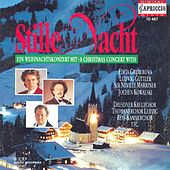 Christmas Concert (Stille Nacht) by Various Artists
